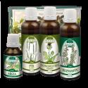 Doplněk z bylin při jarní detoxikaci organismu